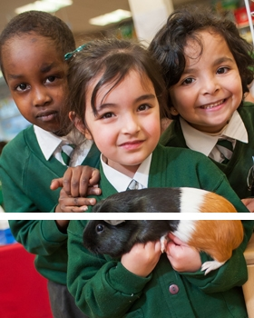 Pupils holding the classroom guinea pig at River View Primary School